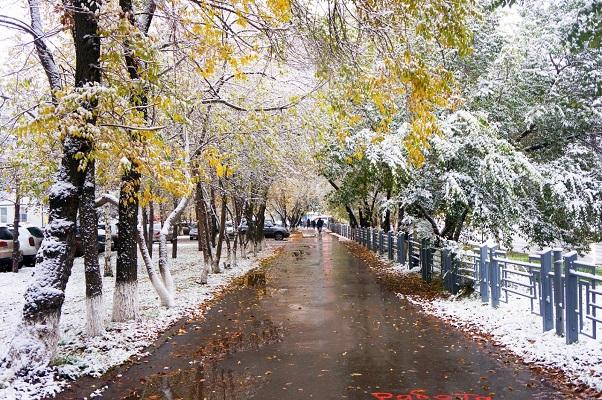 Во многих регионах Украины наблюдаются дожди со снегом