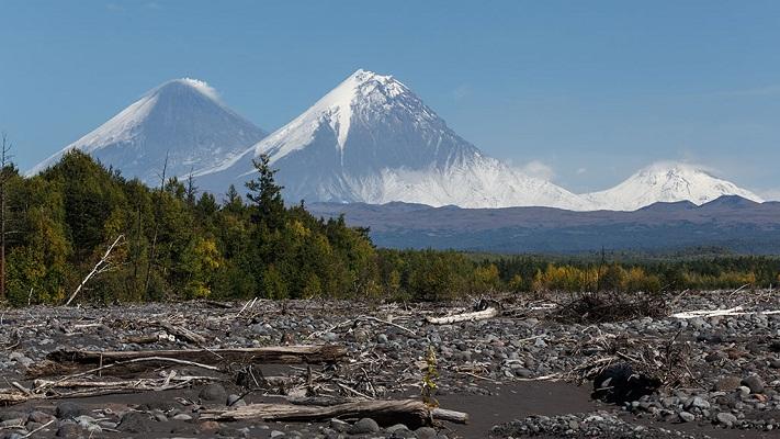 На Камчатке зафиксирована серия землетрясений