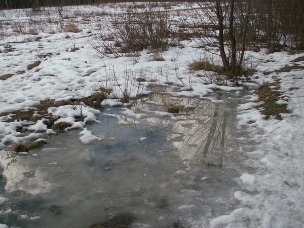 Со среды в Украине ожидается значительное потепление