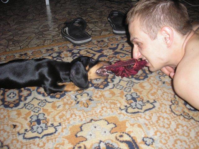 Севастополь  -  с прояснениями 09.06.2010