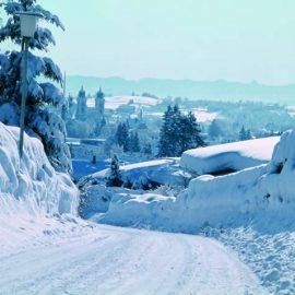В Чернівці прийде справжня зима — із снігом та морозами