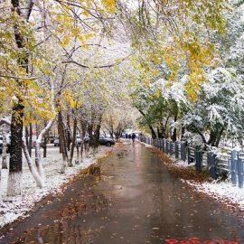 В Украине пройдут дожди
