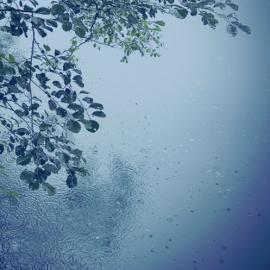 В Україну ненадовго прийдуть дощі