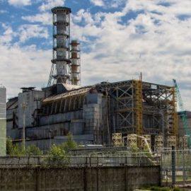 Грибы питающиеся радиацией в Чернобыльской зоне
