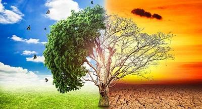 глобальным потеплением