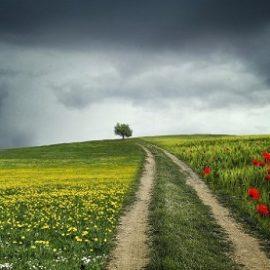 Погода на выходные 12 и 13 июня в Украине