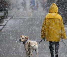 В найближчі дні в Харкові очікується припинення опадів