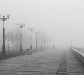 Без дощу та снігу: погода в Запоріжжі