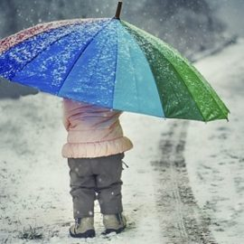 Погода в Харкові холодна та дощова