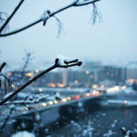 Пятница будет «нелетная» – осадки в виде мокрого снега ❅💧
