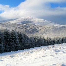 На Боржаві побудують новий гірськолижний курорт