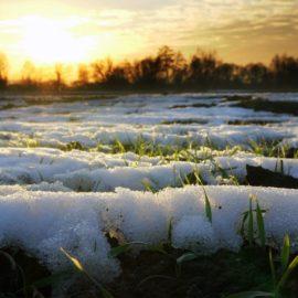 Прогноз погоды на выходные 8 марта