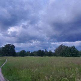 Ждите сильных ливней: Погода на неделю с 14 по 20 июня