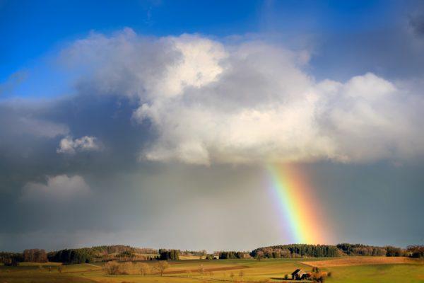 Погода на неделю с 19 по 25 июля: Жара спадет