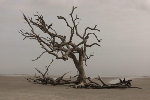 Как сухой воздух влияет на самочувствие?