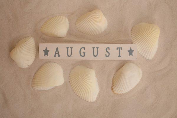 Погода на выходные 28 и 29 августа