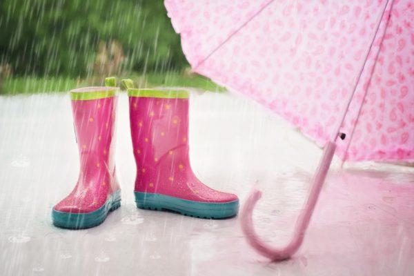 Погода на неделю с 16 по 22 августа: После дождичка в четверг