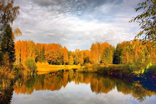 Погода на 26 сентября в Украинских регионах