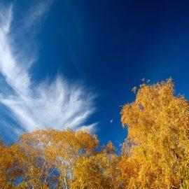 Докладний прогноз погоди на 29 вересня в Україні