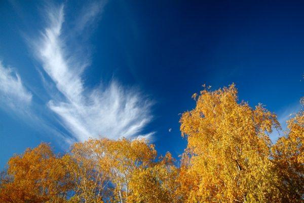 Погода на 29 сентября в Украине